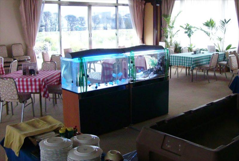 ホテルパインヒル様に海水魚水槽・クラゲ水槽を設置 水槽画像2