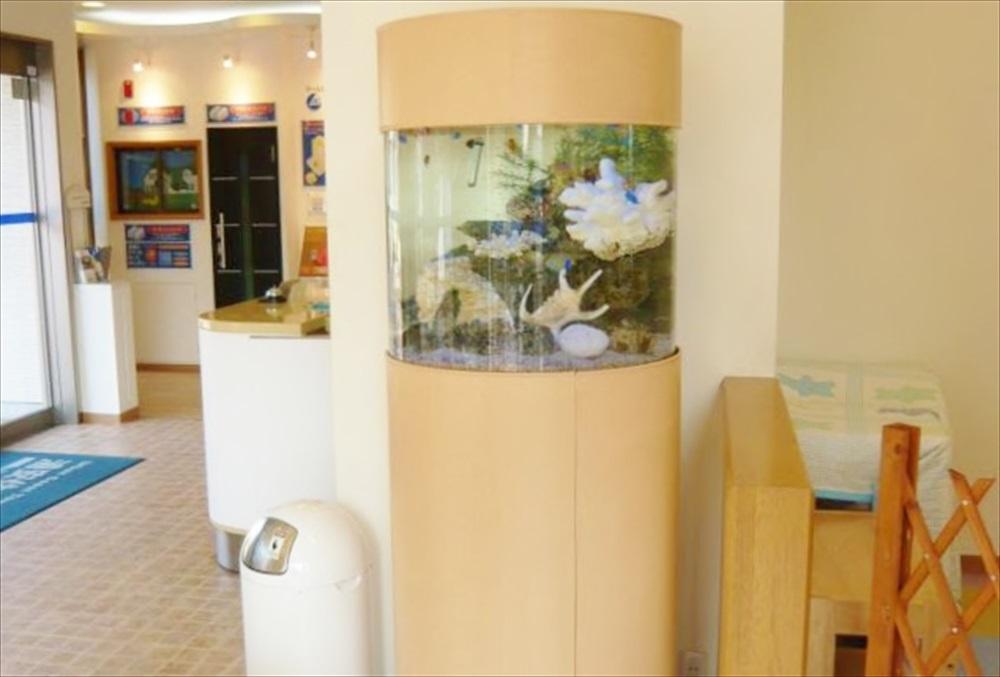 住宅展示場様に45cm円柱水槽を設置しました メイン画像