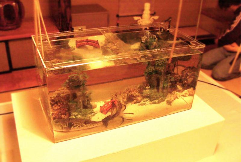 映画撮影の協力で複数の水槽を設置【和風水槽編】 水槽画像2