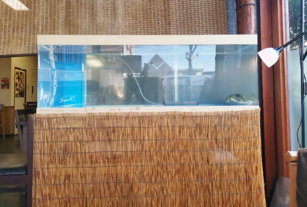 鮨割烹うめむら様 活魚水槽 斜め画像