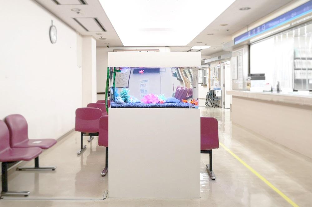 病院の待合室 90cm金魚水槽 アップ画像
