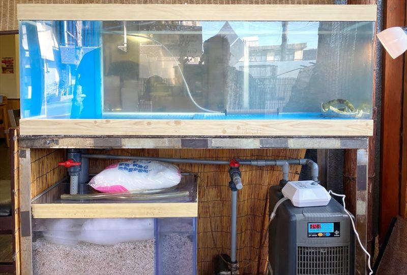 鮨割烹うめむら 様 活魚水槽 スポットメンテナンス 水槽画像5
