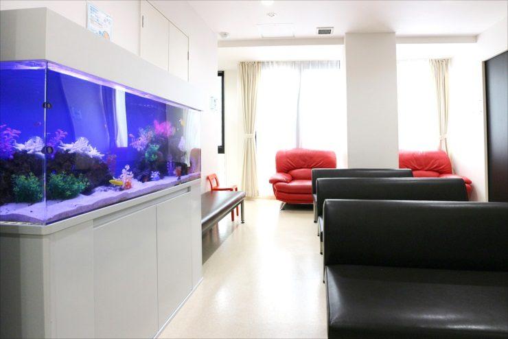 サムネイル画像「練馬区 皮膚科小児科の待合室 120cm海水魚水槽 その後」