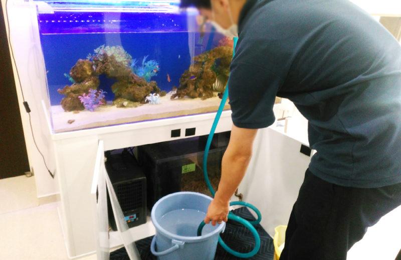 練馬区 皮膚科小児科の待合室 120cm海水魚水槽 リース事例 その後 水槽画像3