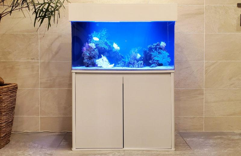 個人宅様 90cm海水魚水槽 設置事例 その後 水槽画像2
