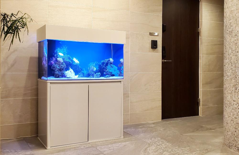 個人宅様 90cm海水魚水槽 設置事例 その後 メイン画像