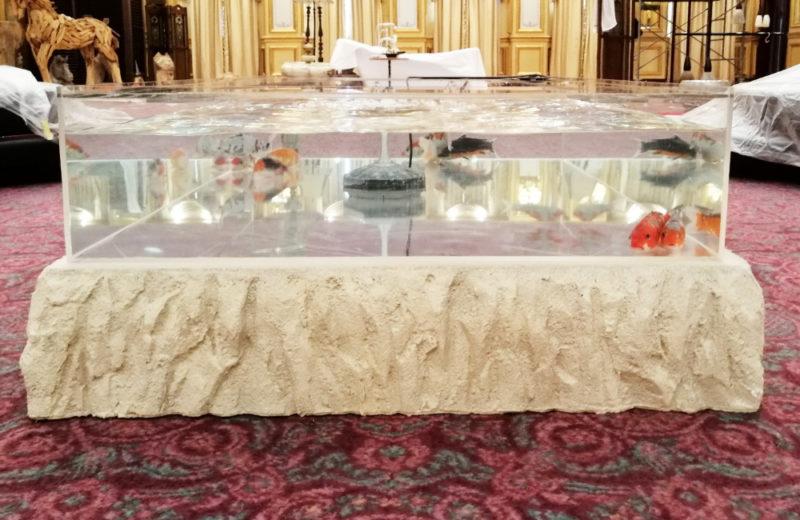 テレビドラマ『ネメシス』撮影現場に大型のテーブル水槽を設置! 水槽画像4