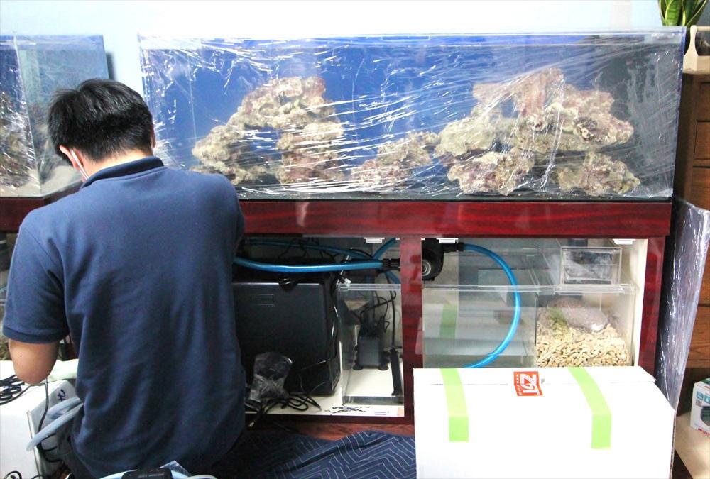 個人宅 海水魚水槽 水槽台設置画像