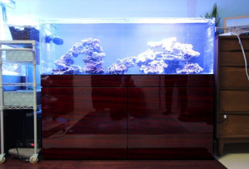 個人宅のリビング 海水魚水槽2台 水槽一式販売・設置事例 水槽画像3