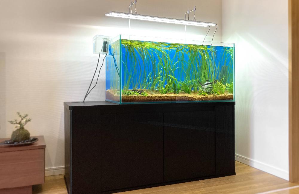 個人宅 90cm淡水魚水槽 販売・引っ越し事例 メイン画像