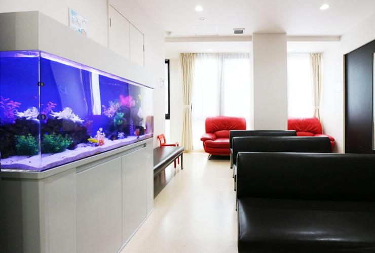 病院・クリニック・歯科医院に熱帯魚水槽を設置する理由とは? 水槽画像