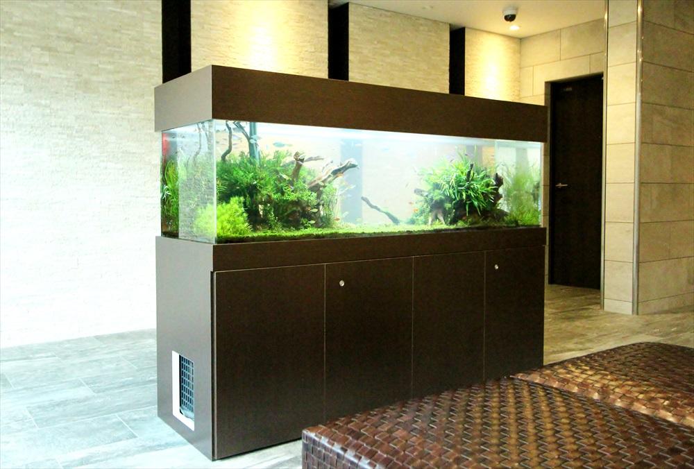 マンションのエントランス 大型淡水魚水槽 斜め画像