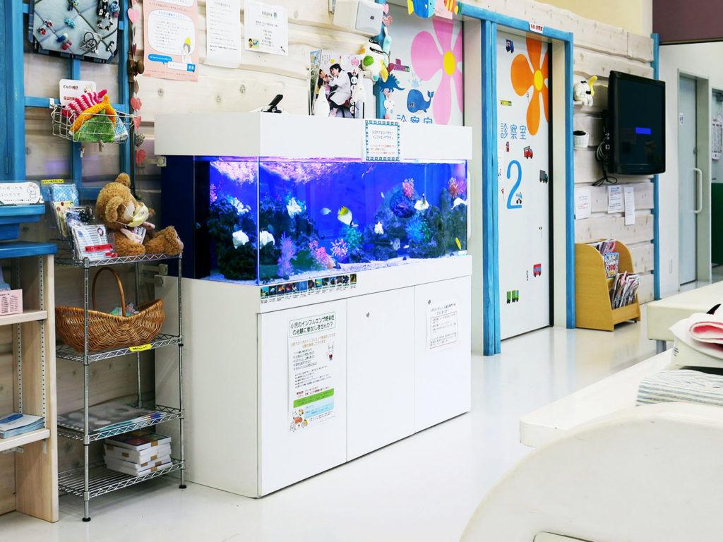45事例でまる分かり!熱帯魚水槽を病院・クリニックに設置するとこんなに癒されるのサムネイル画像