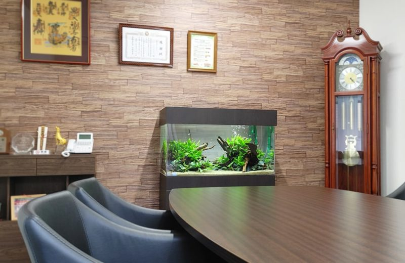 愛知県 オフィス 90cm淡水魚水槽 設置事例 水槽画像4