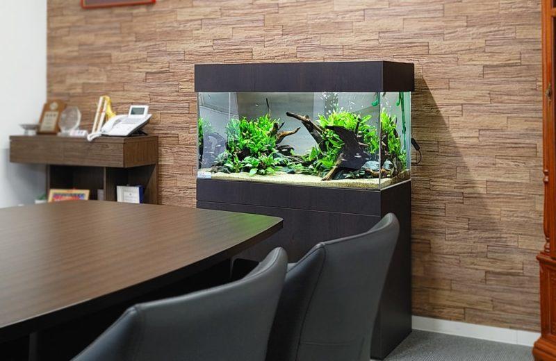 愛知県 オフィス 90cm淡水魚水槽 設置事例 水槽画像1