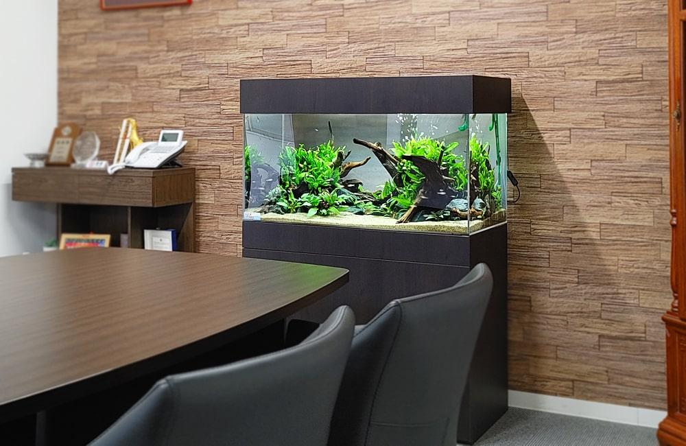 愛知県 オフィス 90cm淡水魚水槽 水槽レンタル事例