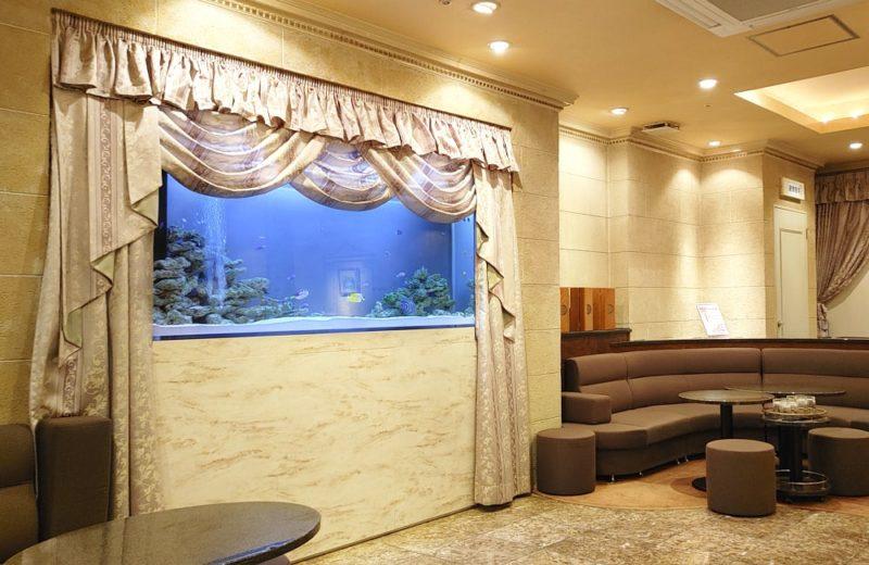 飲食店 200cm大型海水魚水槽 販売・メンテナンス事例 その後 水槽画像1
