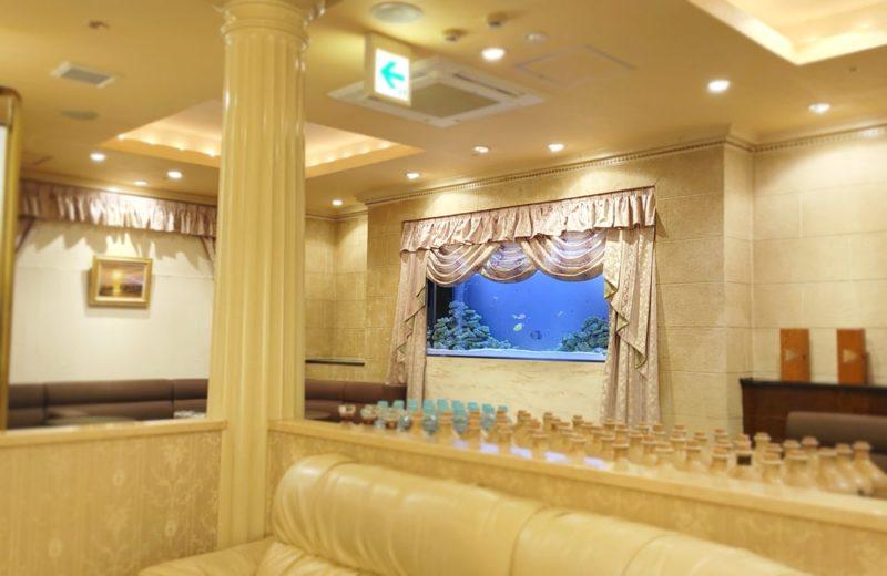 飲食店 200cm大型海水魚水槽 販売・メンテナンス事例 その後 水槽画像4