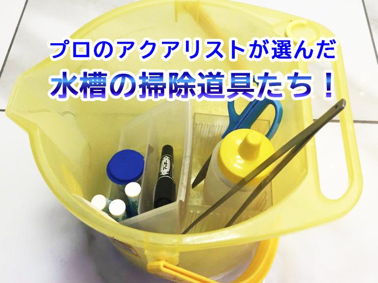 水槽の掃除道具8選!便利でプロアクアリストおすすめのアイテムをご紹介 水槽画像