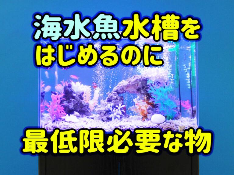 海水魚飼育をはじめよう!マリンアクアリウムを最低限の設備で楽しむ方法 水槽画像