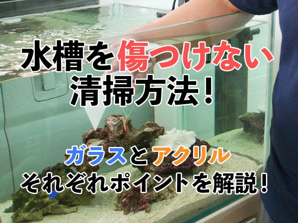 水槽を傷つけない清掃方法!ガラスとアクリルそれぞれのポイントを解説! 水槽画像