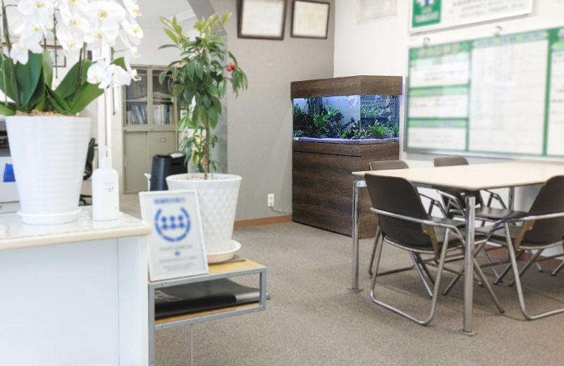 愛知県名古屋市 オフィス 90cm淡水魚水槽 レンタル事例 水槽画像5