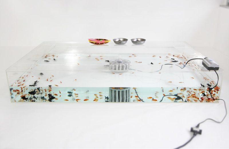 雑誌撮影用にレンタル 150cm 金魚水槽 短期レンタル事例 水槽画像2