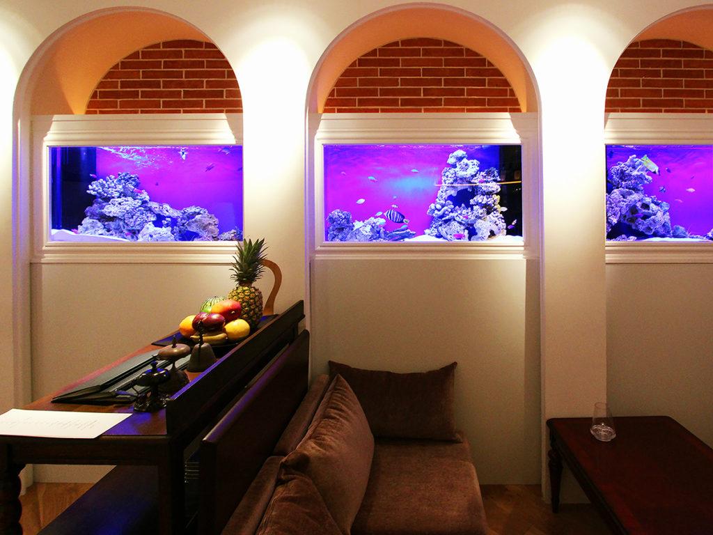 飲食店に水槽を設置する理由とメリット!熱帯魚水槽から活魚水槽まで解説しますのサムネイル画像