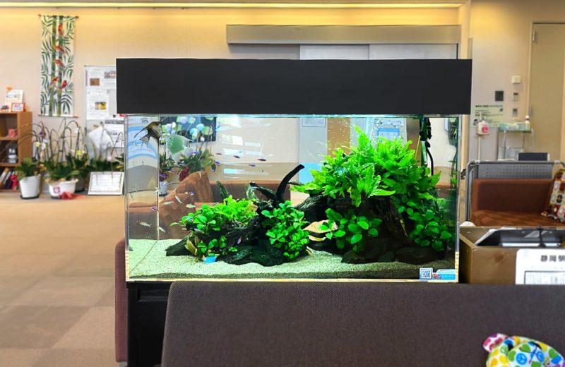 福祉施設様 90cm淡水魚水槽 販売・メンテナンス事例 水槽画像2