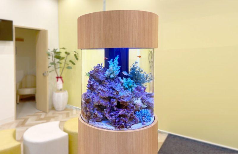 ひっぽこどもアレルギークリニック様 円柱 海水魚水槽販売・メンテナンス事例 水槽画像2