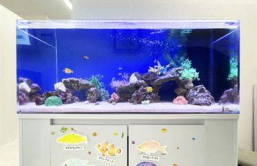 きっずあいらんど ふたば中川教室様 120cm海水魚水槽 水槽レンタル事例