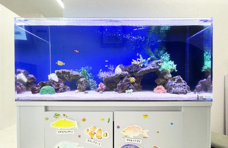 きっずあいらんど ふたば中川教室様 120cm海水魚水槽 水槽レンタル事例 水槽画像1