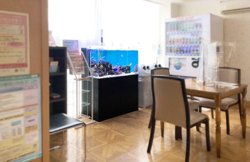 産科・婦人科クリニック様 90cm海水魚水槽 水槽メンテナンス事例 水槽画像5