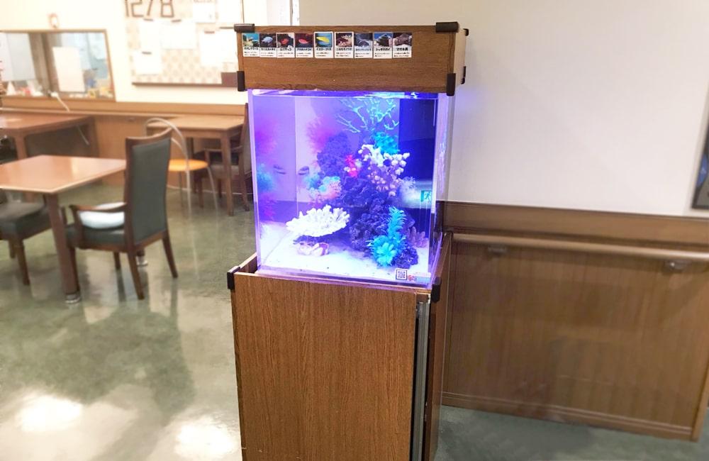 老人ホーム 海水魚水槽 レンタル