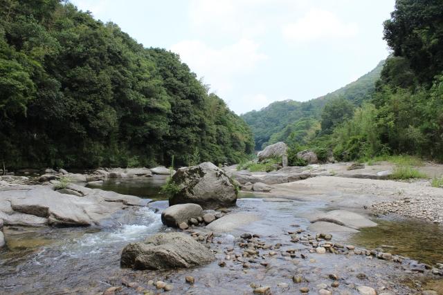 石や流木を川や山から採集して水槽に入れてもいいの?注意点を解説しますのサムネイル画像