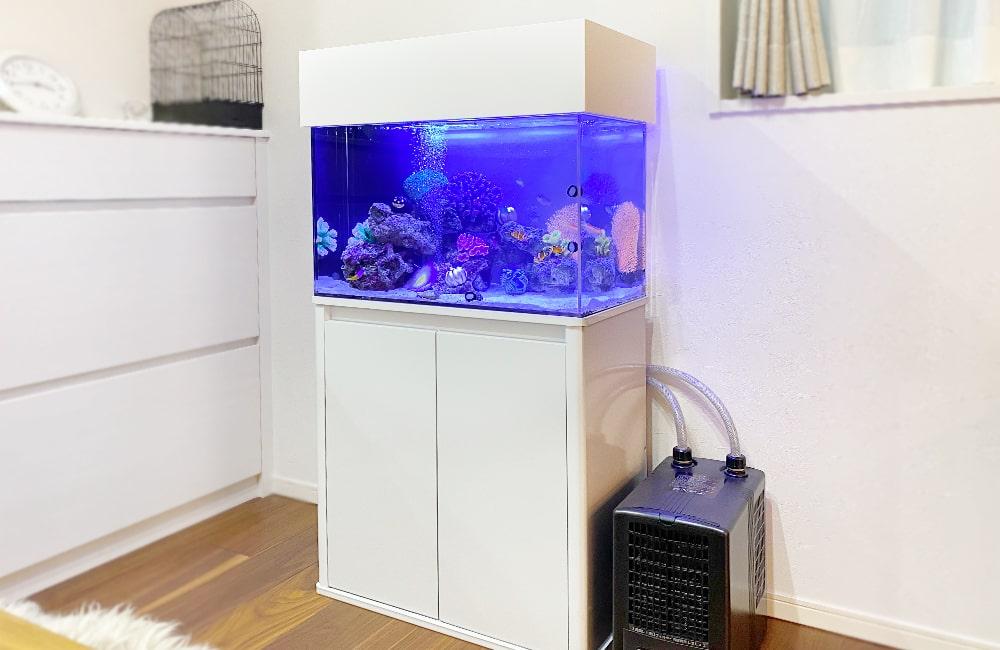 岐阜県 ご自宅に設置 60cm海水魚水槽 水槽レンタル事例