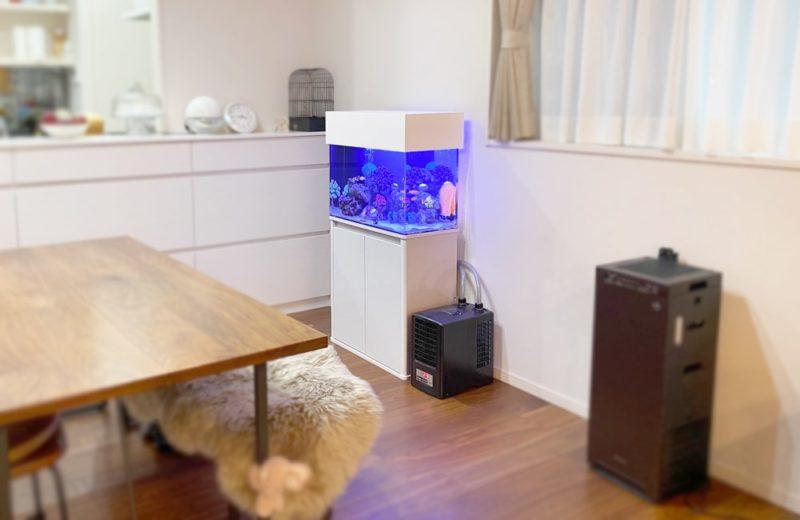 岐阜県 ご自宅に設置 60cm海水魚水槽 水槽レンタル事例 水槽画像5