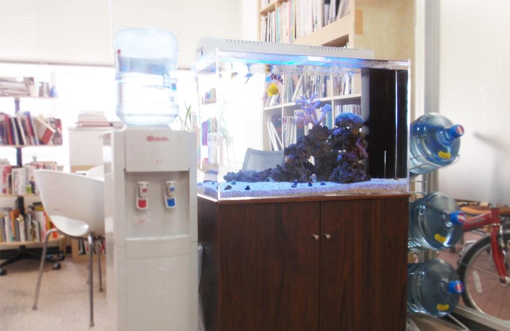 東京都中央区 オフィス 海水魚水槽 販売・水槽リニューアル事例 メイン画像