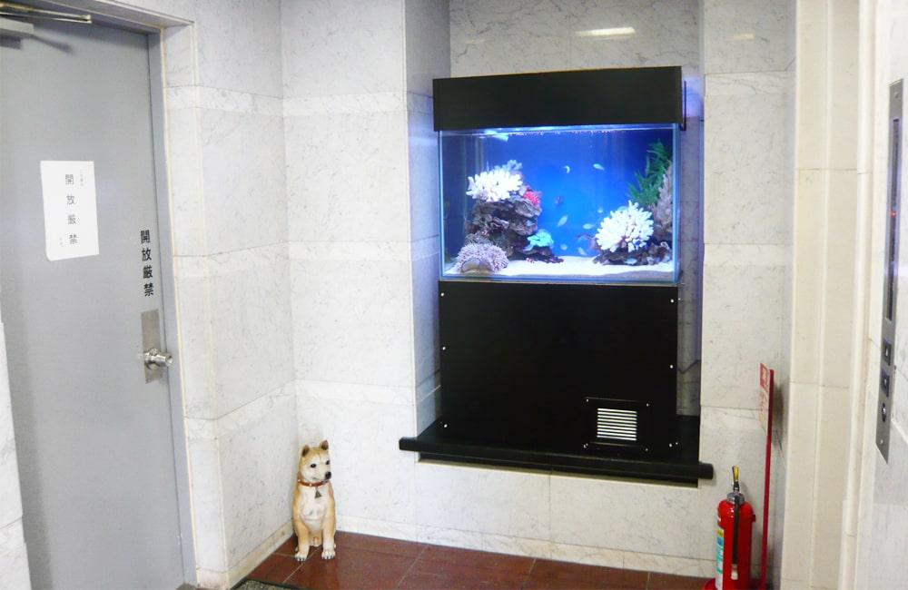 企業ビル ホーム 90cm海水魚水槽 水槽レンタル事例 メイン画像