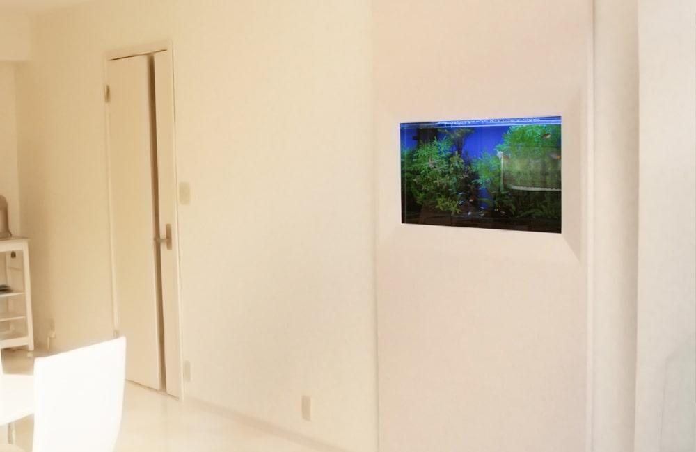 撮影スタジオ 90cm壁埋め込み式水槽を設置 水槽レンタルサービス事例 メイン画像