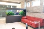 熱帯魚水槽リースサービス