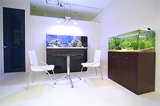 東京アクアガーデン 水槽2