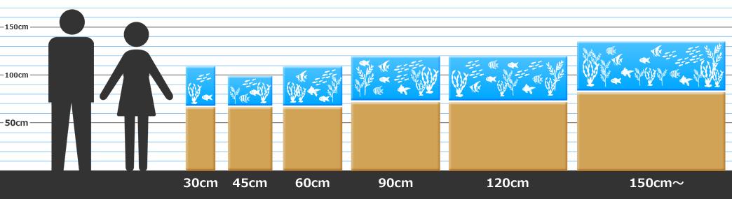 水槽サイズ比較 水槽レンタル
