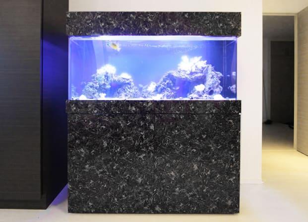 東京アクアガーデン レンタル水槽 120cm海水魚アクアリウム水槽