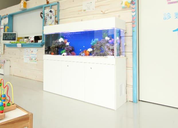 東京アクアガーデン レンタル水槽 150cm海水魚アクアリウム水槽
