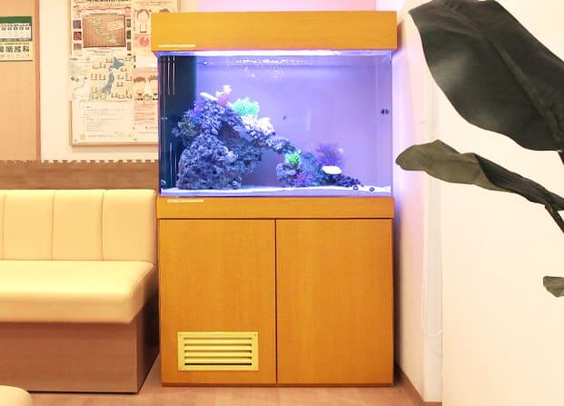 東京アクアガーデン レンタル水槽 90cm海水魚アクアリウム水槽