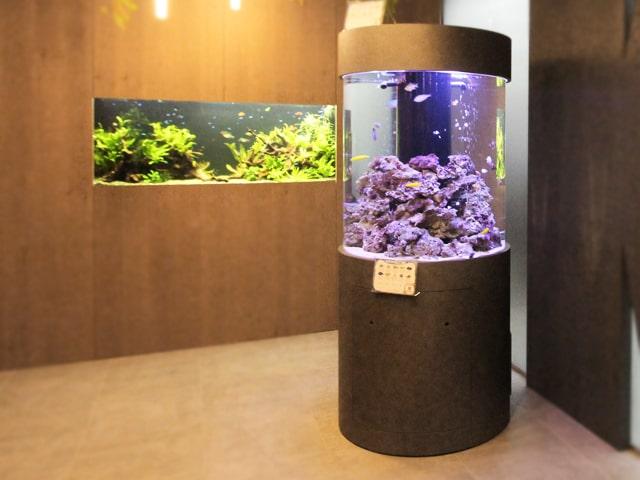 水槽販売サービス 様々なサイズ・形状の水槽