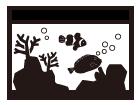 水槽レンタル 海水魚水槽
