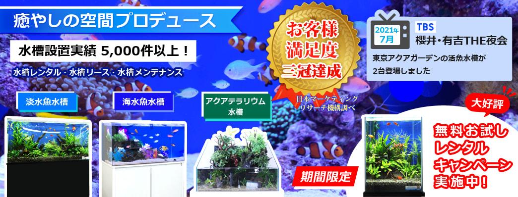 東京アクアガーデンはお客様満足度No.1を獲得しました!熱帯魚水槽のレンタル、リース、メンテナンスを通してお客様に癒しの空間をお届けします。