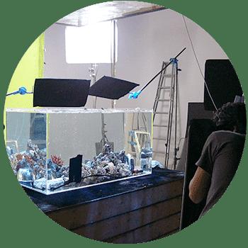 東京アクアガーデンの撮影・イベント・短期レンタル水槽